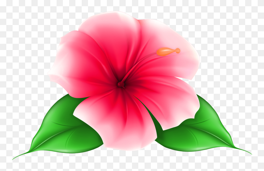 Tropical Flowers Clipart Free Download Best Tropical Flowers - Rhododendron Clipart