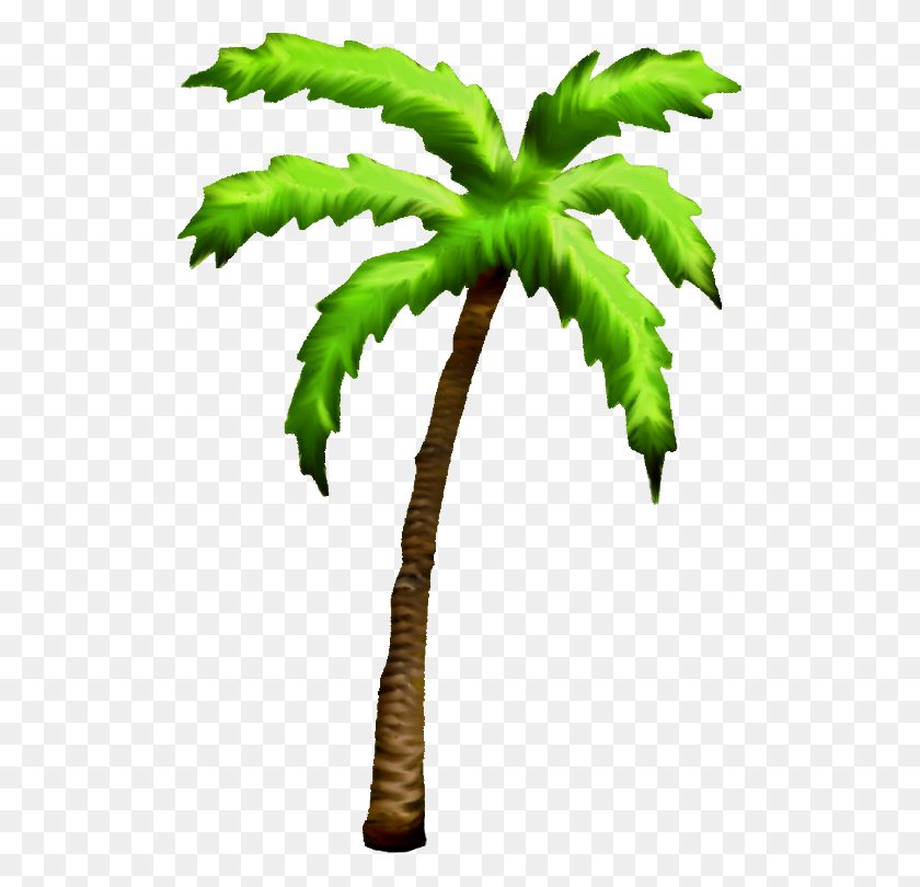 Tropical Tree Clipart - Cedar Tree Clipart