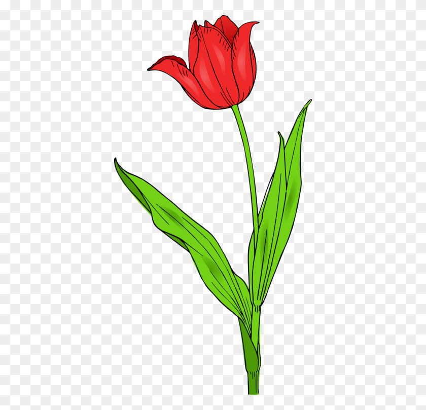 Tulip Mania Flower Download Wild Tulip Garden Tulip Free - Wild Flowers Clipart