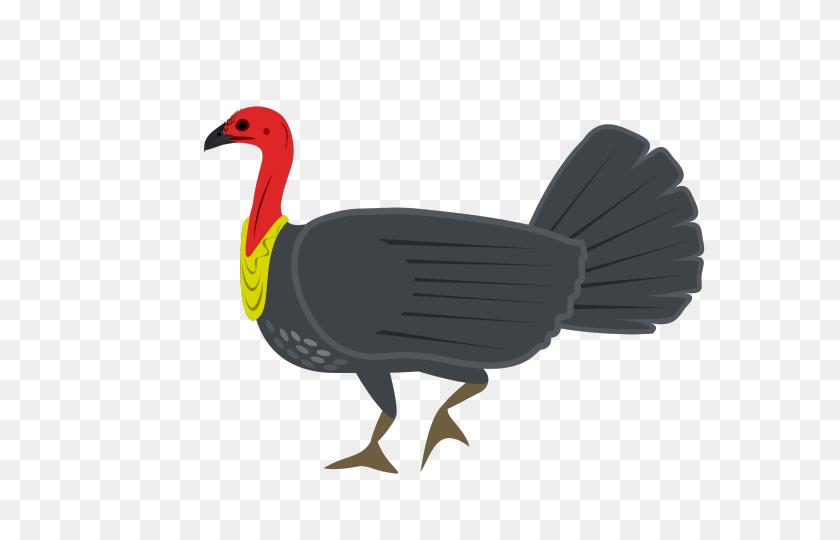 Turkey Bird Clipart Big Turkey - Turkey Bird Clipart