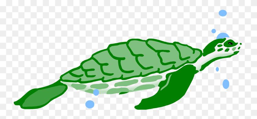 Turtle Aquarium Clipart Clip Art Images - Free Turtle Clipart