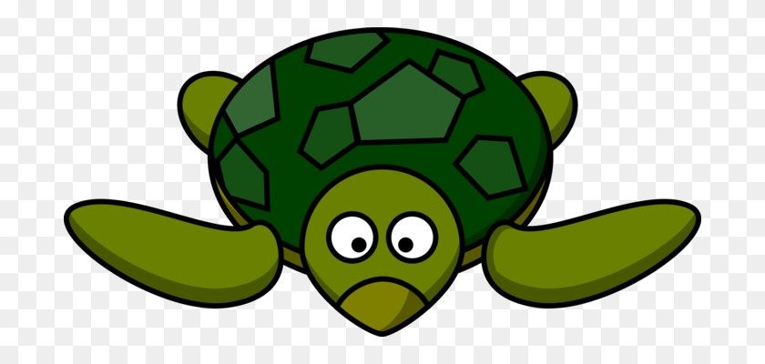 Turtle Shell Green Sea Turtle Drawing - Turtle Shell Clipart