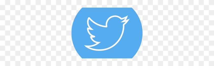 Twitter White Logo Png Png Image - Twitter White Logo PNG
