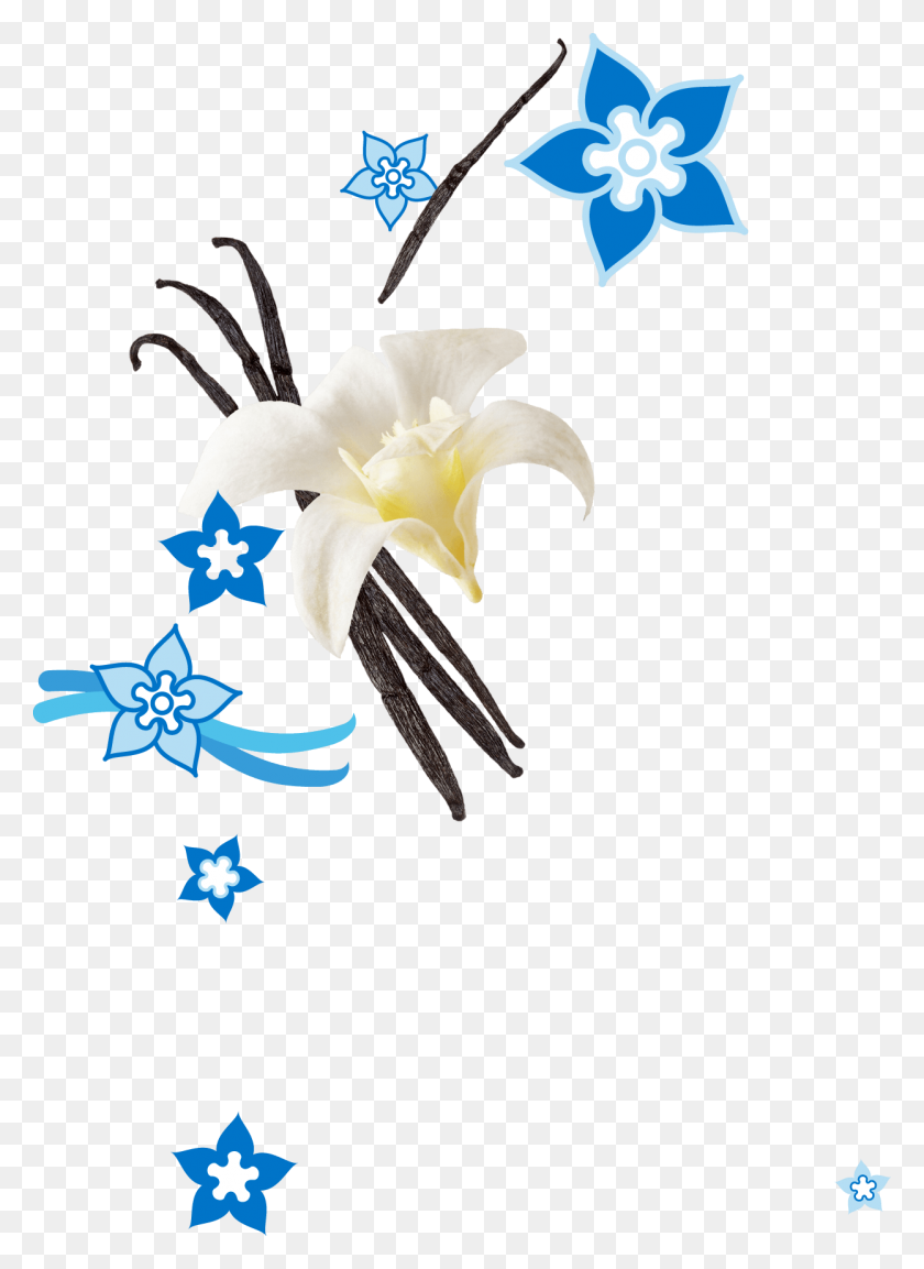Vanilla Bean Mochi Ice Cream Mymo Mochi Ice Cream - Vanilla Bean Clip Art