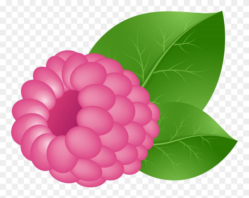 Vegetables Clip Art Dibujo Fruit Veggies Illustrations Fruit - Fruit And Veg Clipart