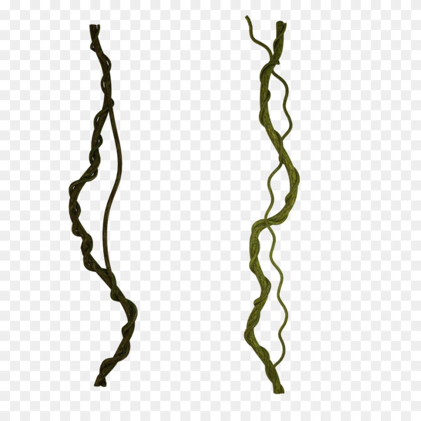 Vines - PNG Vines