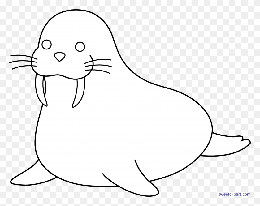 Walrus Lineart Clip Art - Walrus Black And White Clipart