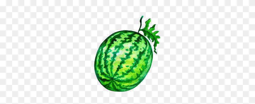 379x283 Water Melon Transparent Png Image - Melon PNG