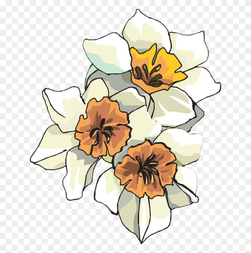 Web Design Development Clip Art, Flowers And Cards - Carnation Clipart
