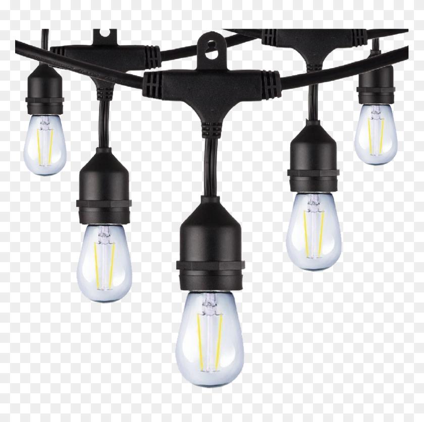 Westgate Led String Lights With Bulbs Legend Lights - String Lights PNG