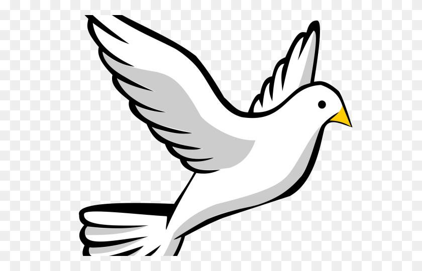 640x480 White Dove Clipart Clip Art - Sacrifice Clipart