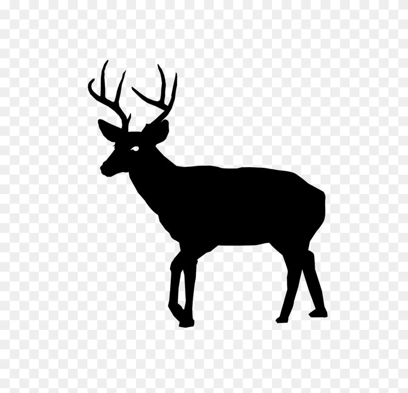 White Tailed Deer Art - Whitetail Deer Clipart