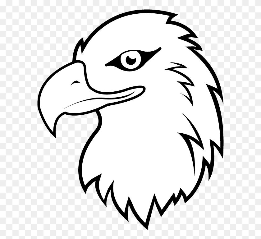 White Tailed Eagle Clipart Eagle Head Eagle Head Clipart