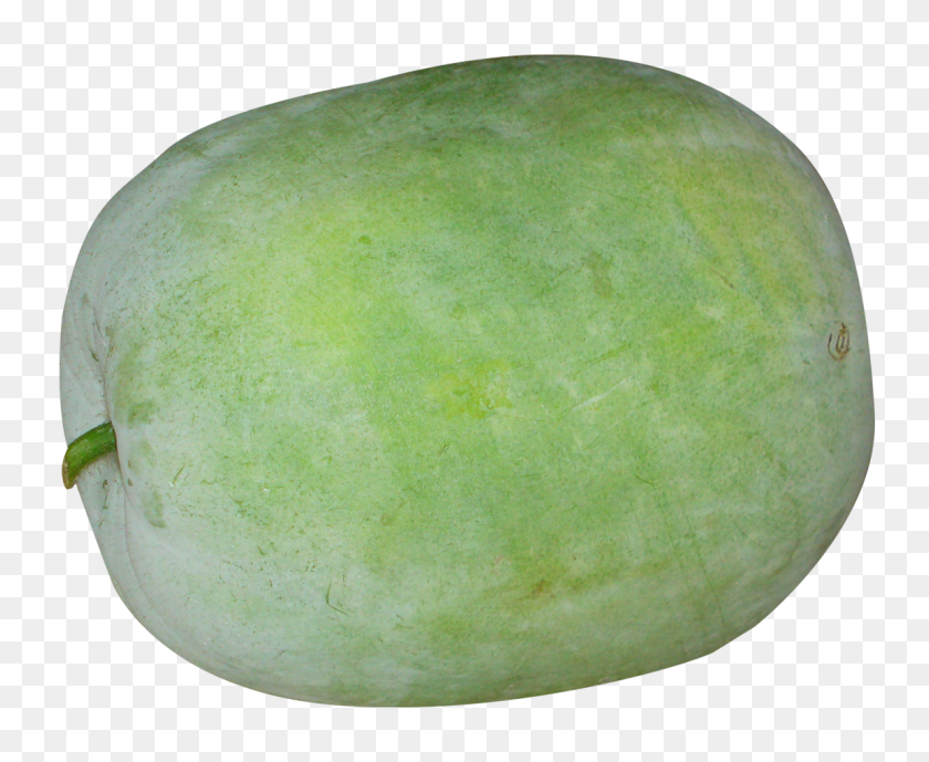 1153x931 Winter Melon Png Image - Melon PNG