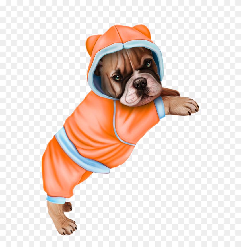 Xl Dog Tubes - English Bulldog Clipart