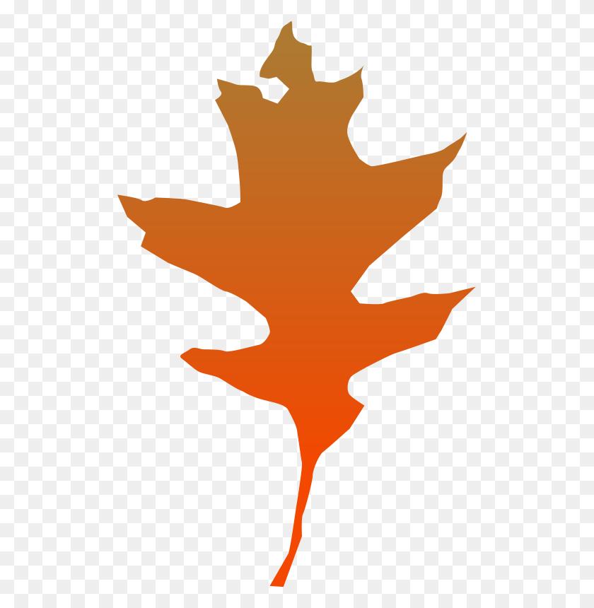 Yeli Free Download Png Vector - Oak Tree Silhouette PNG