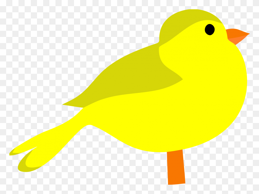 2258x1654 Yellow Bird Clipart Png - Saber Tooth Tiger Clipart