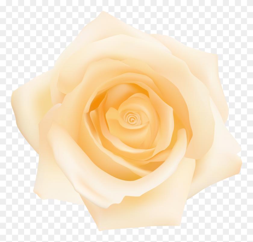 Yellow Rose Transparent Clip - Yellow Roses PNG