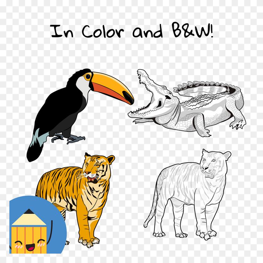 Zoo Animals Clip Art On Behance - Zoo Animals Clipart