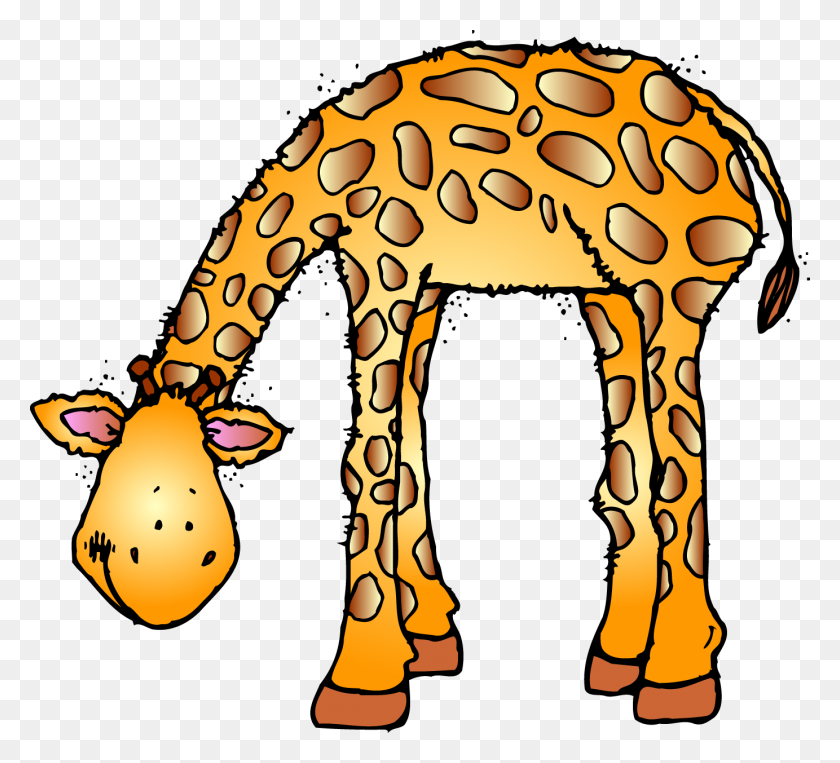 Zoo Animals Clipart Free Jungle Animals Clipart Black And White Stunning Free Transparent Png Clipart Images Free Download
